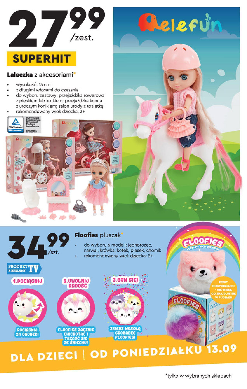 Gazetka Biedronka: Gazetka Biedronka - katalog od 13.09. 2021-09-13 page-17