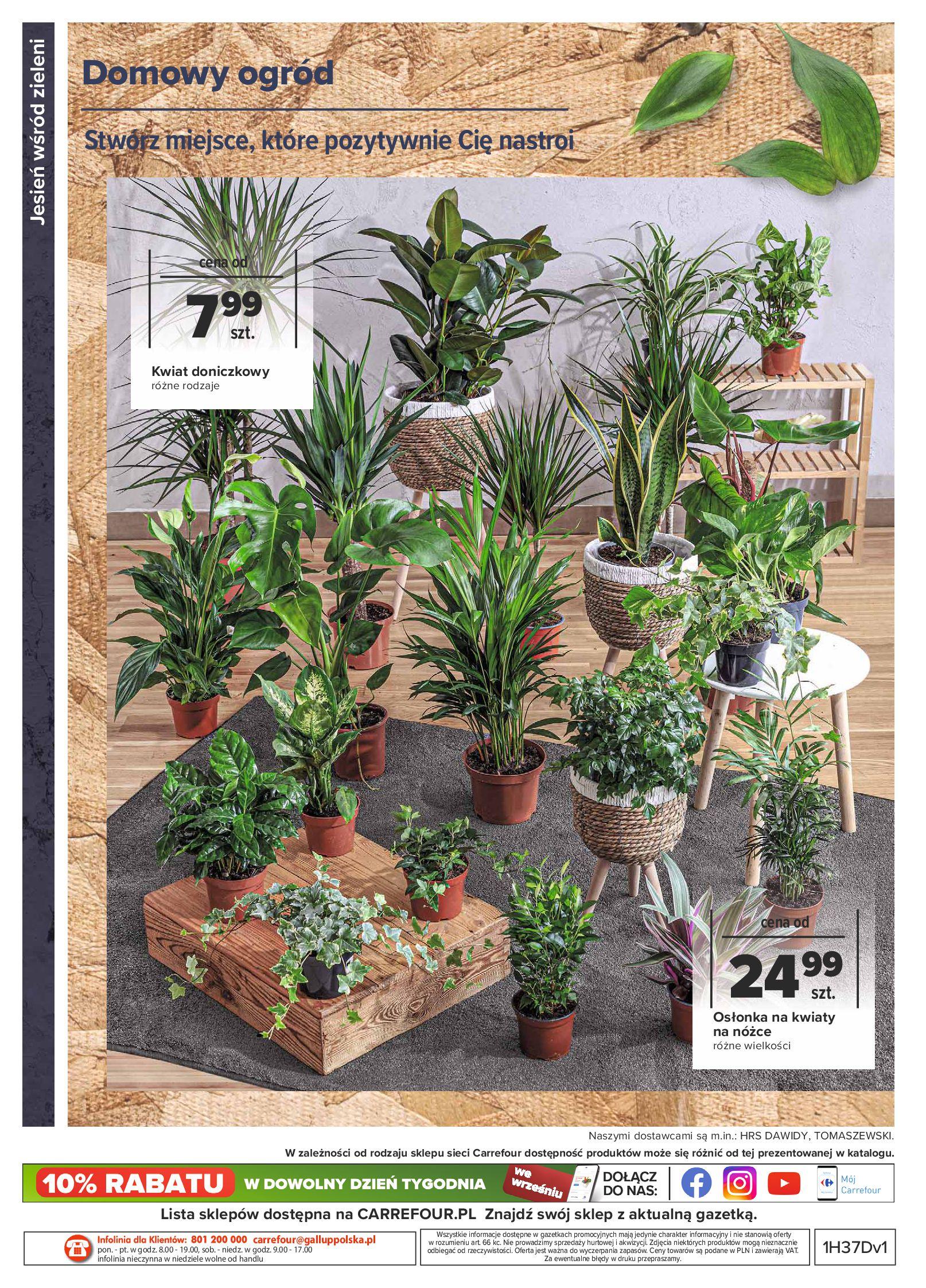 Gazetka Carrefour: Gazetka Carrefour - Dom gotowy na Jesień! 2021-09-14 page-16
