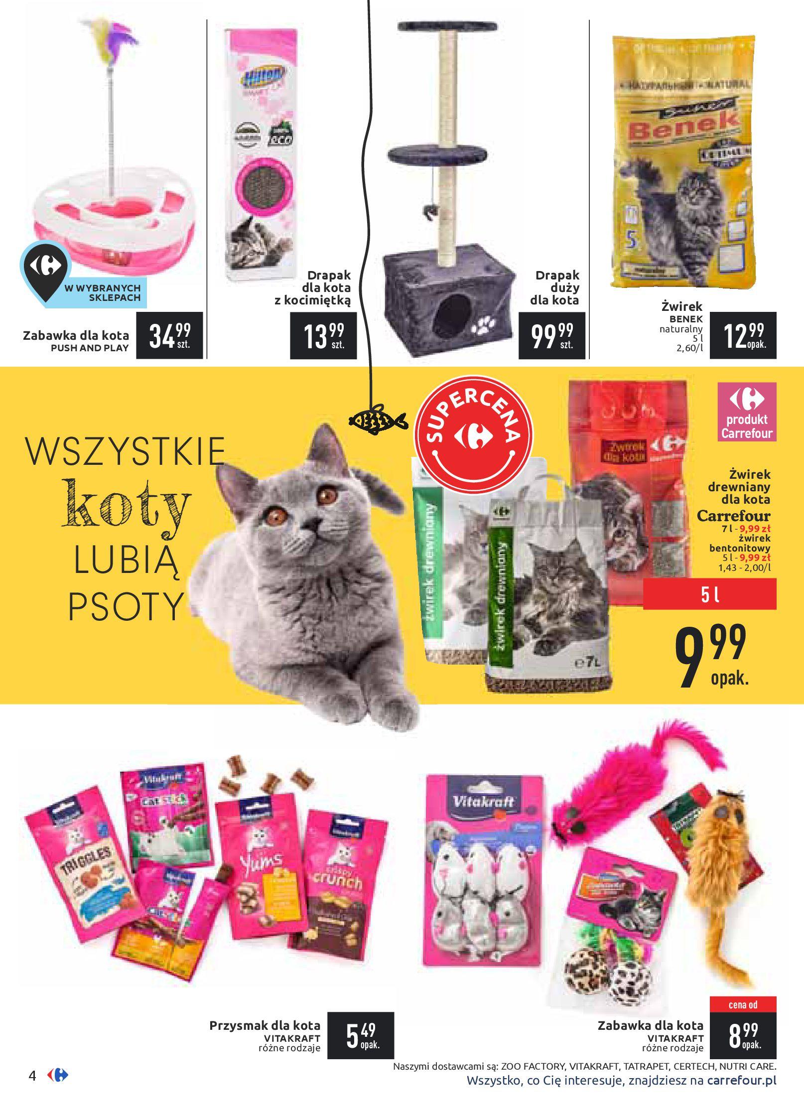 Gazetka Carrefour - Zwierzaki GÓRĄ!-10.02.2020-24.02.2020-page-4