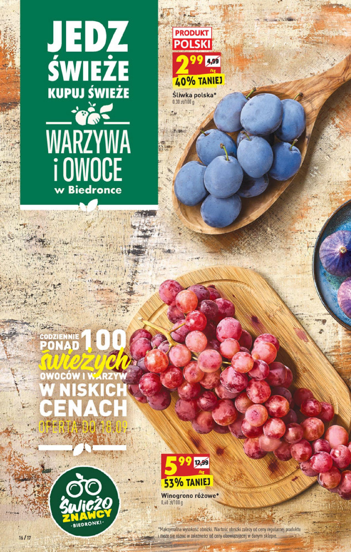 Gazetka Biedronka: Gazetka Biedronka - W tym tygodniu od 16.06 2021-09-16 page-16