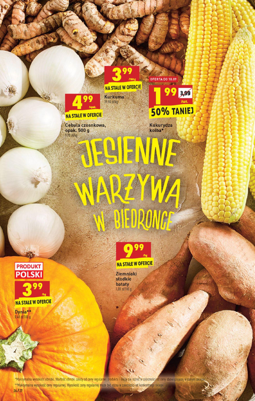 Gazetka Biedronka: Gazetka Biedronka - W tym tygodniu od 16.06 2021-09-16 page-26