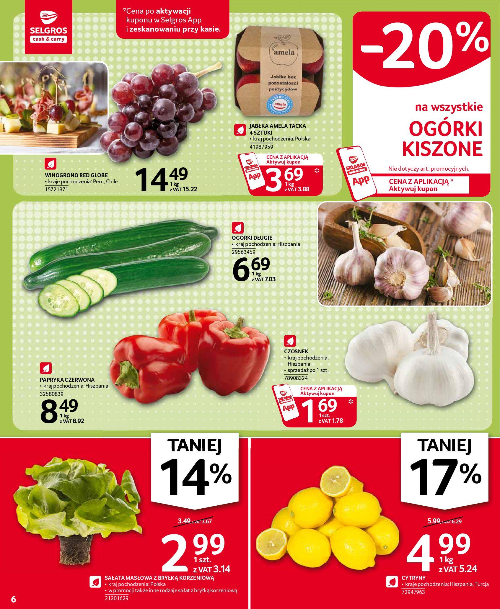 Gazetka Selgros: Oferta spożywcza 2021-01-07 page-6