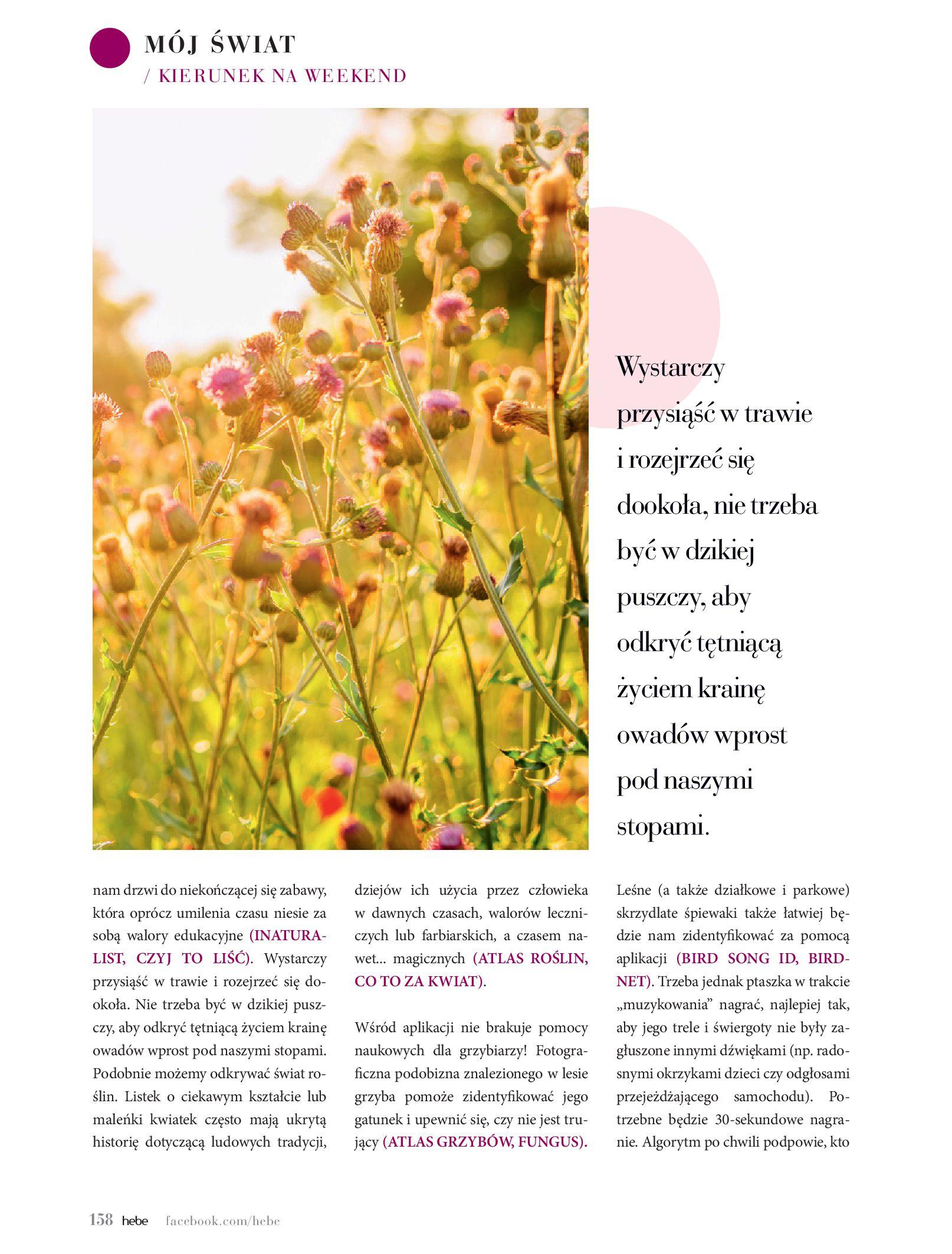 Gazetka hebe: Magazyn hebe - TURBO nawilżanie po urlopie 2021-09-01 page-158