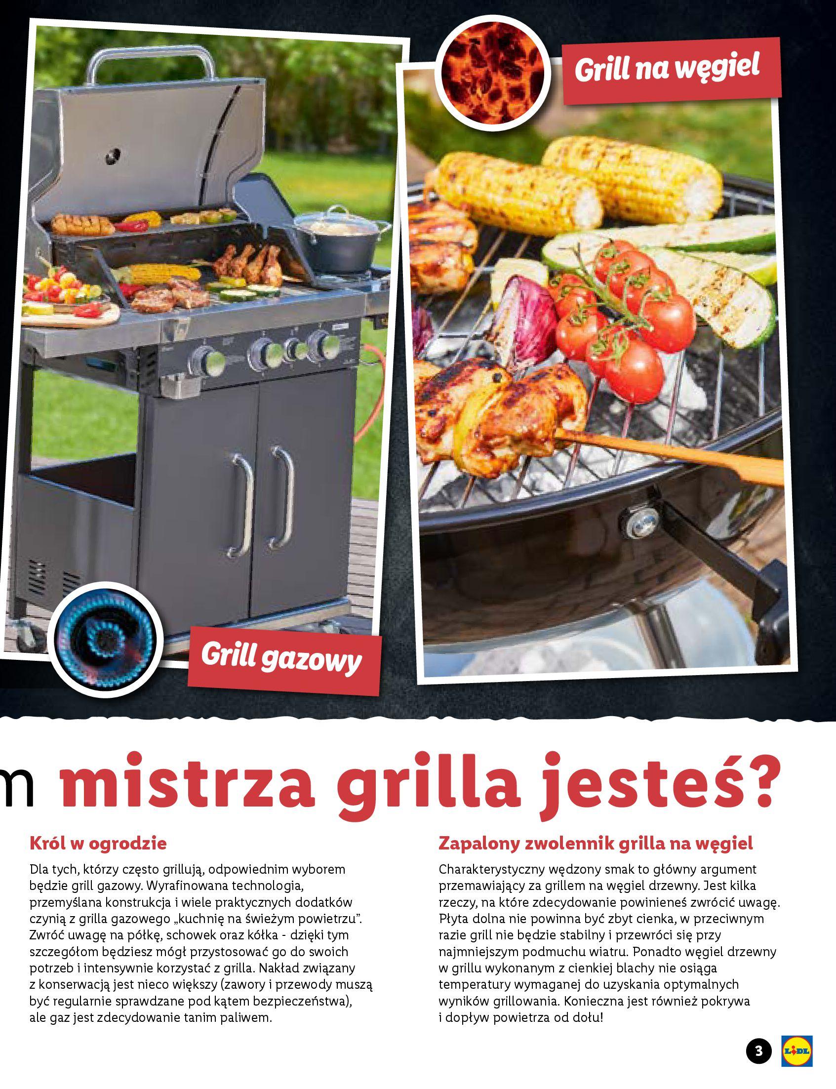 Gazetka Lidl: Katalog Majówka 2021 2021-04-22 page-3