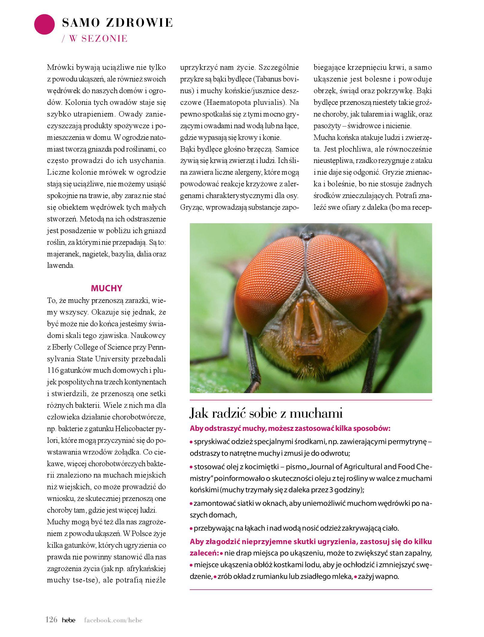 Gazetka hebe: Magazyn Hebe - Trendy na lato 2021-07-01 page-126