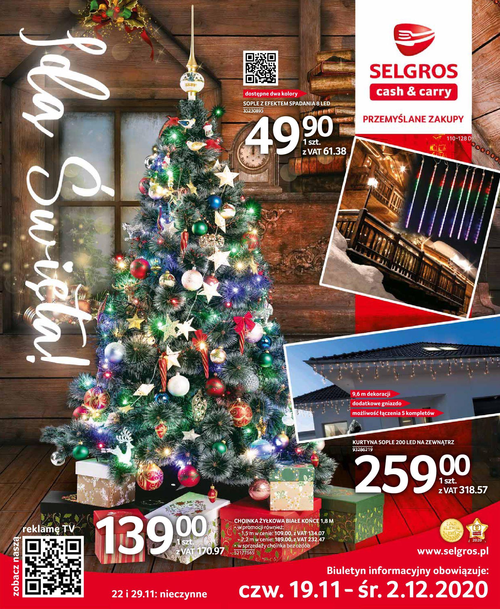 Gazetka Selgros: Oferta przemysłowa 2020-11-19 page-1