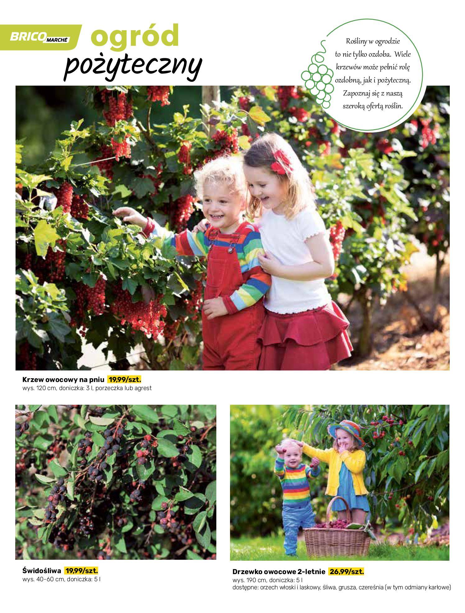 Gazetka Bricomarche: Katalog wiosna 2021-03-31 page-50