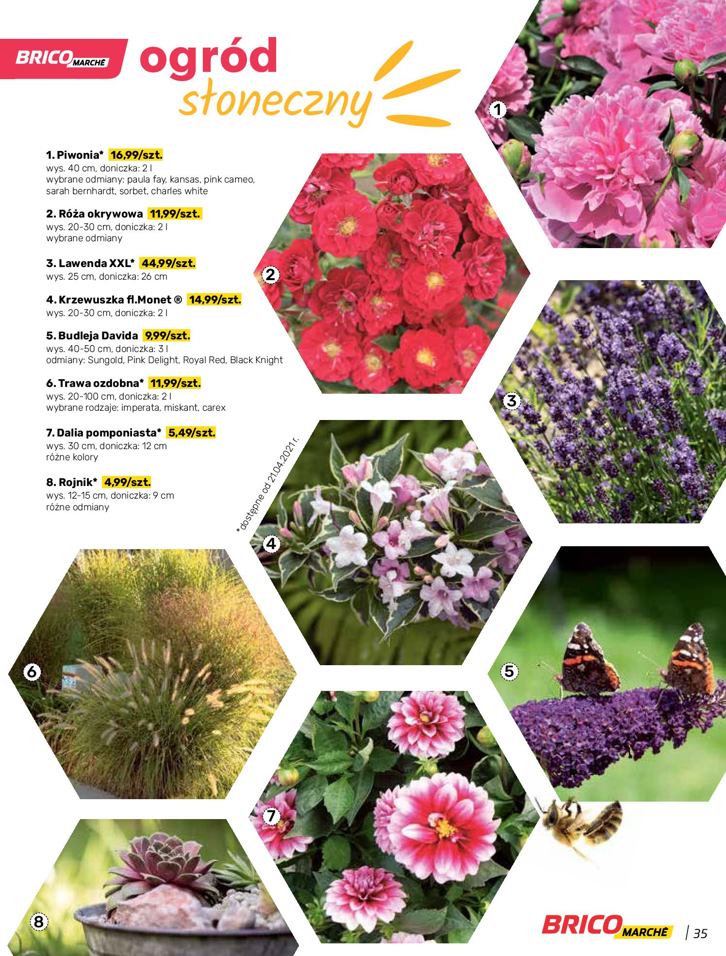 Gazetka Bricomarche: Katalog wiosna 2021-03-31 page-35