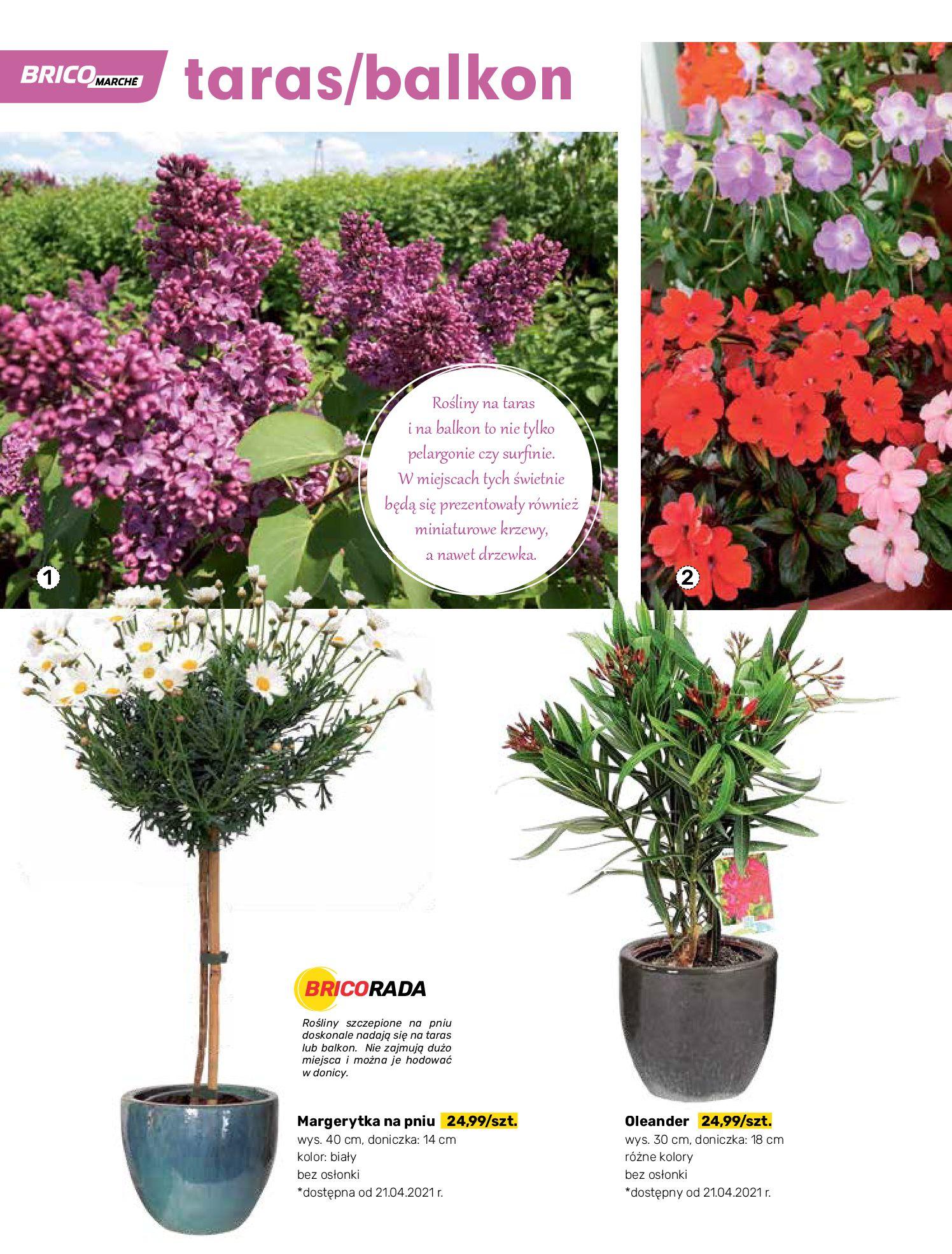 Gazetka Bricomarche: Katalog wiosna 2021-03-31 page-38