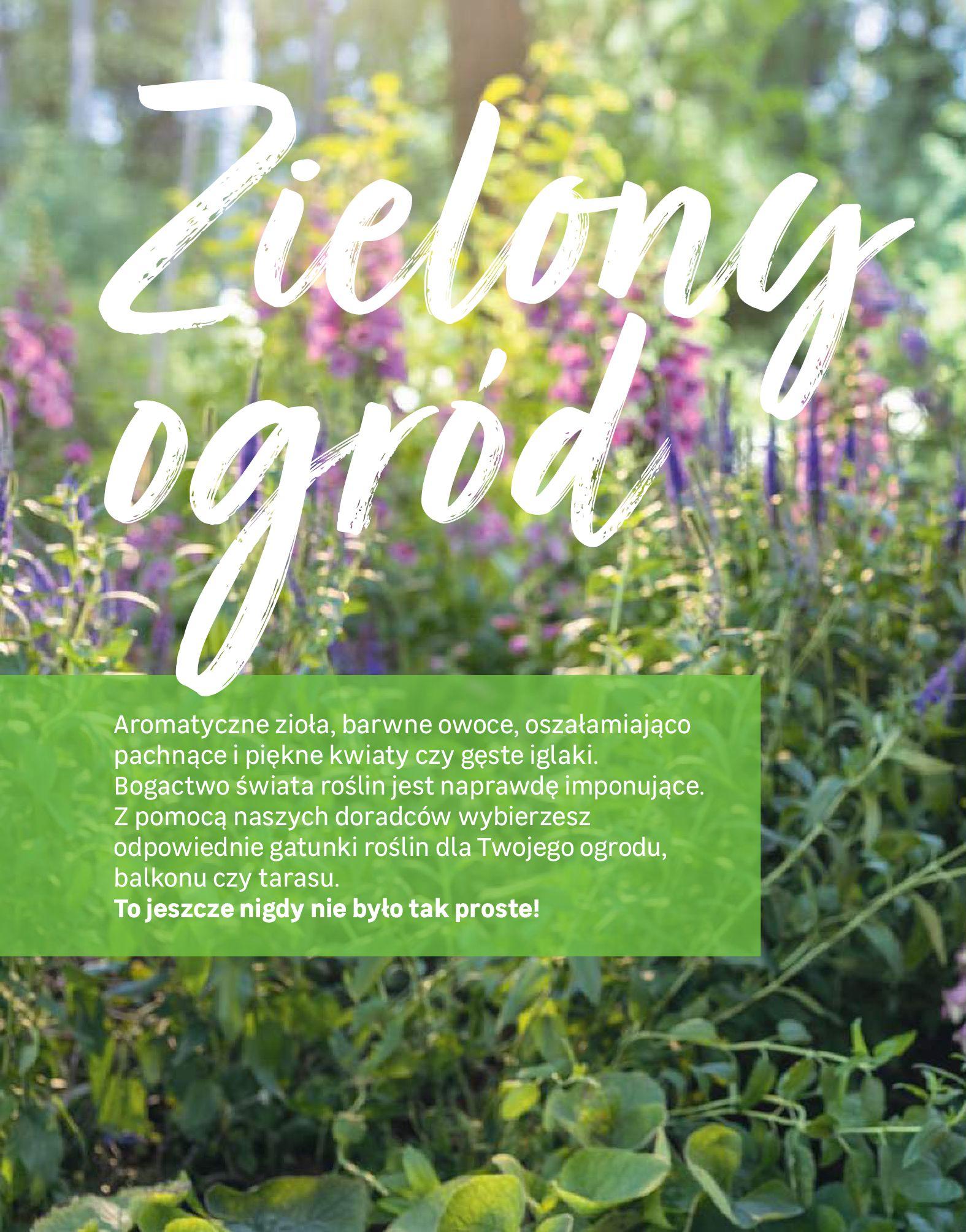 Gazetka Leroy Merlin: Katalog Ogród 2021-03-10 page-84