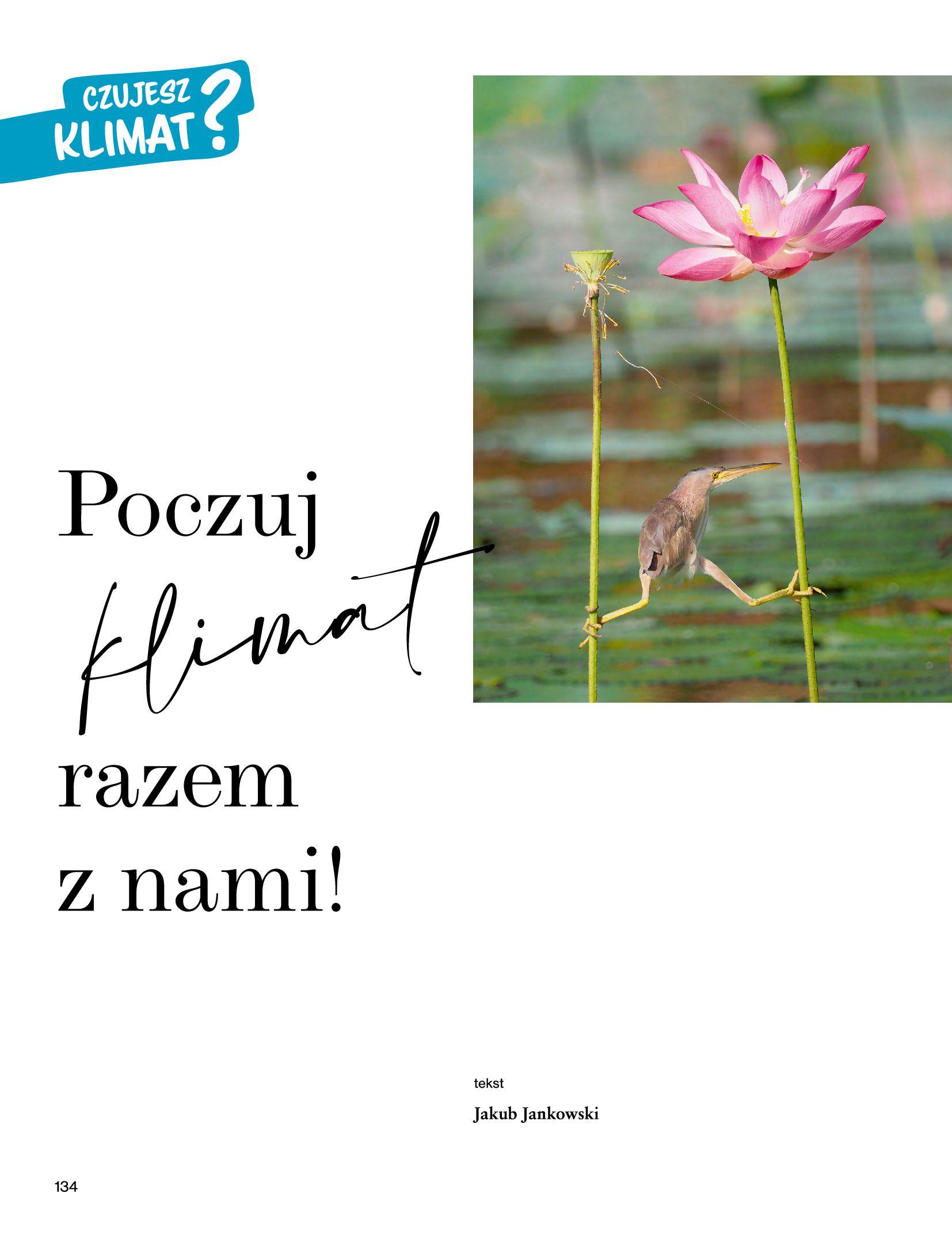 Gazetka Rossmann: Magazyn Rossmann - Skarb 2021-05-18 page-134