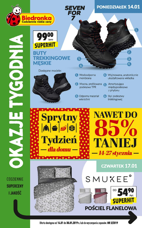 Gazetka Biedronka - Okazje tygodnia-13.01.2019-30.01.2019-page-