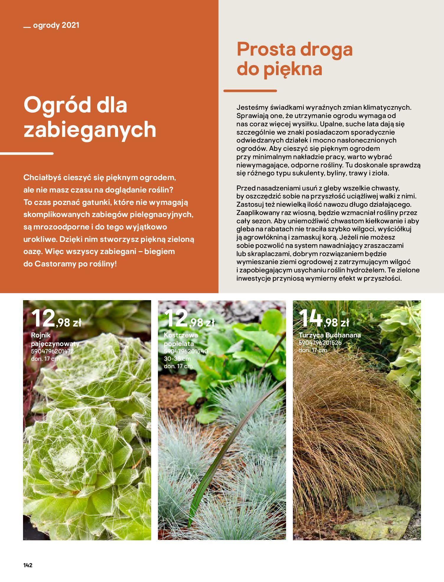 Gazetka Castorama: Katalog ogrody 2021-03-01 page-142