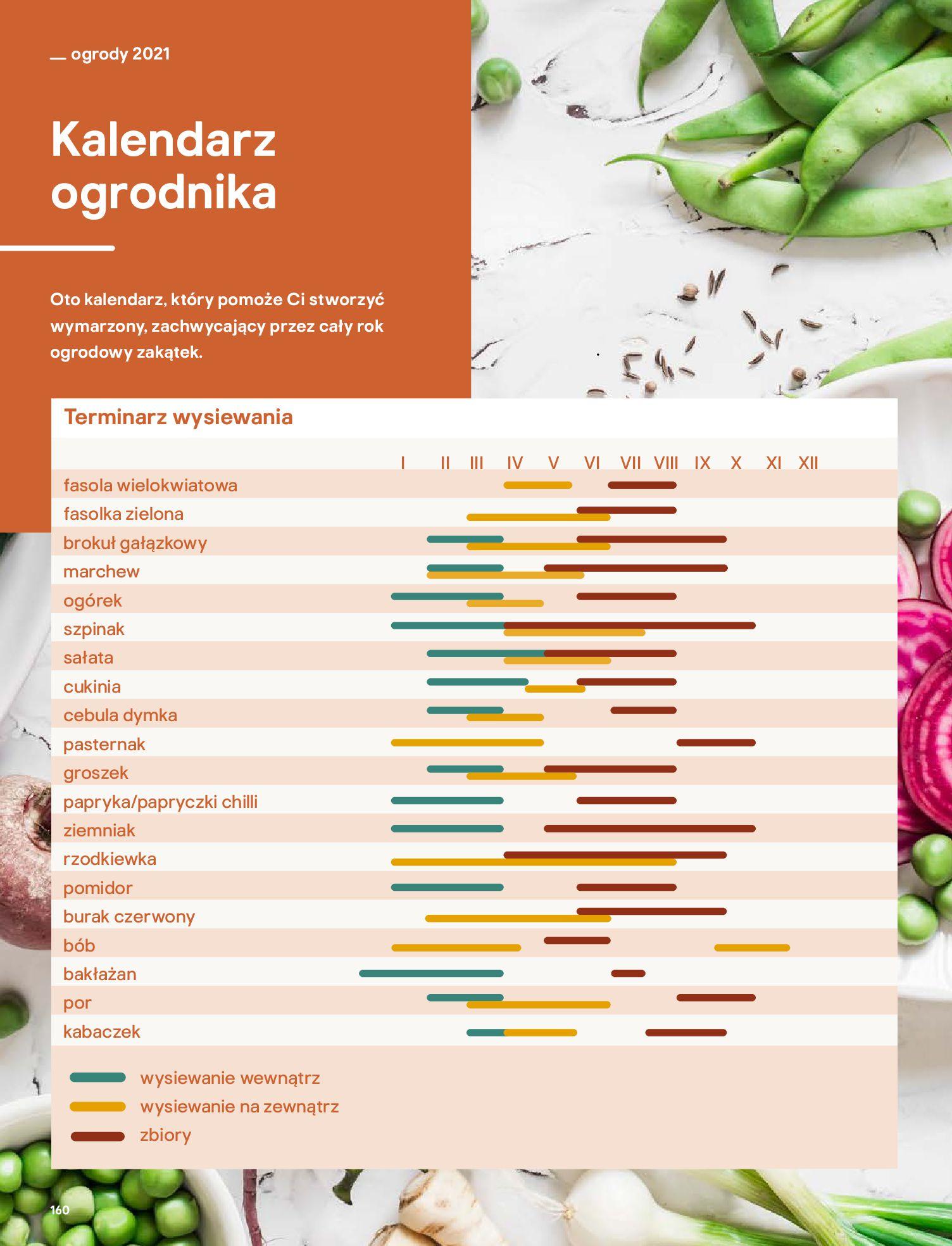 Gazetka Castorama: Katalog ogrody 2021-03-01 page-160