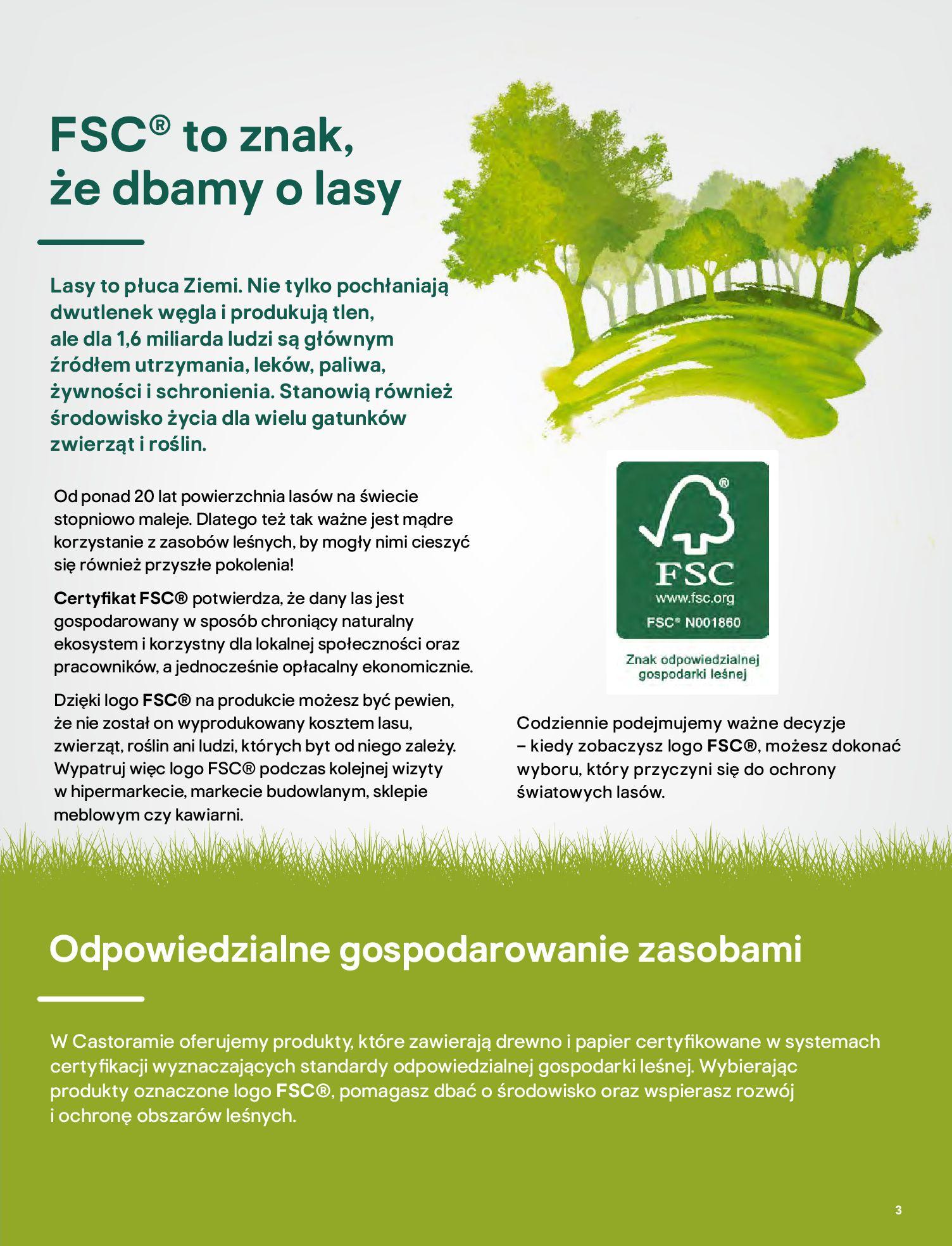 Gazetka Castorama: Katalog ogrody 2021-03-01 page-3