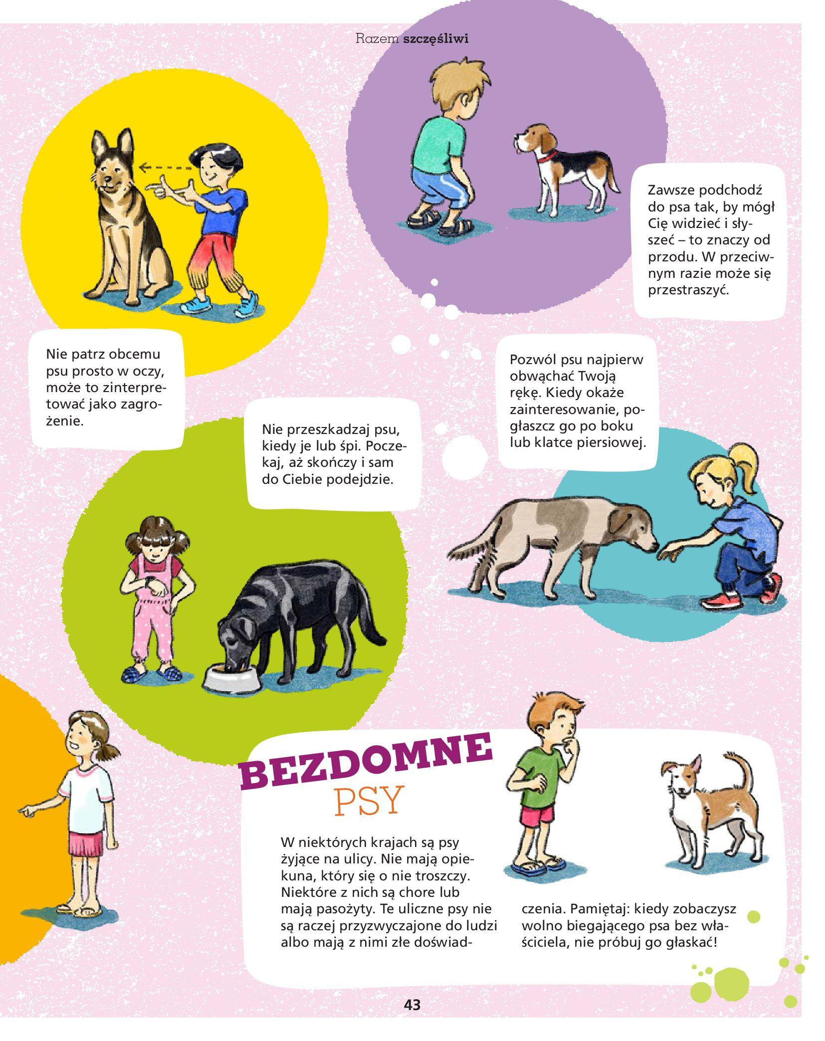 Gazetka Maxi Zoo: Gazetka Maxi Zoo - Friends 2021-05-18 page-43