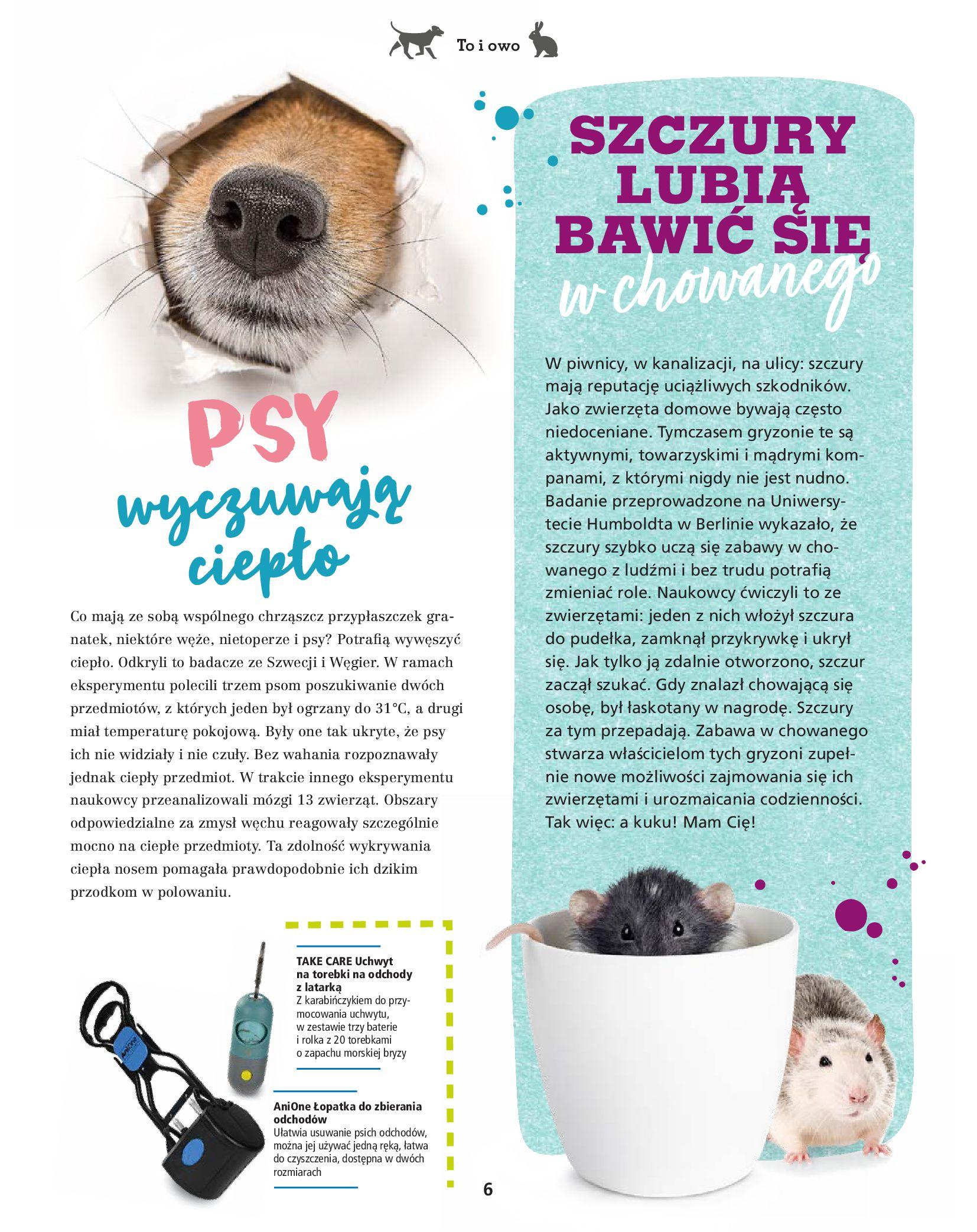Gazetka Maxi Zoo: Gazetka Maxi Zoo - Friends 2021-05-18 page-6