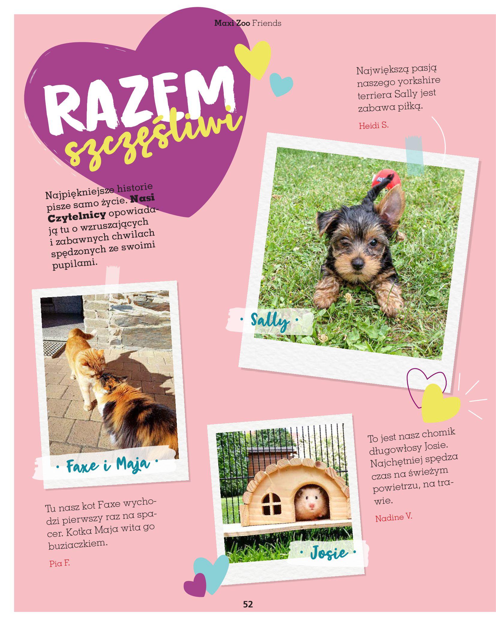 Gazetka Maxi Zoo: Gazetka Maxi Zoo - Friends 2021-05-18 page-52