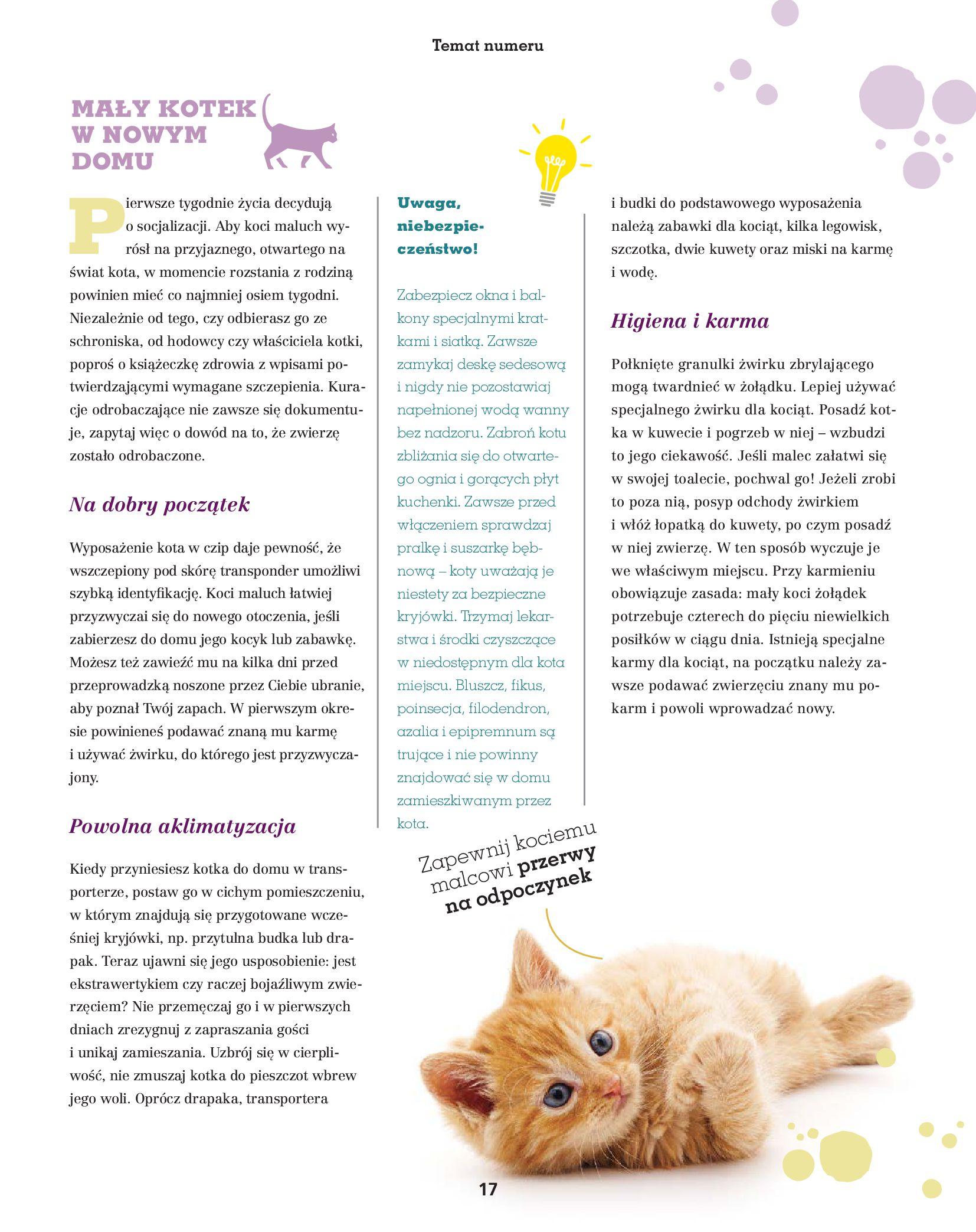 Gazetka Maxi Zoo: Gazetka Maxi Zoo - Friends 2021-05-18 page-17