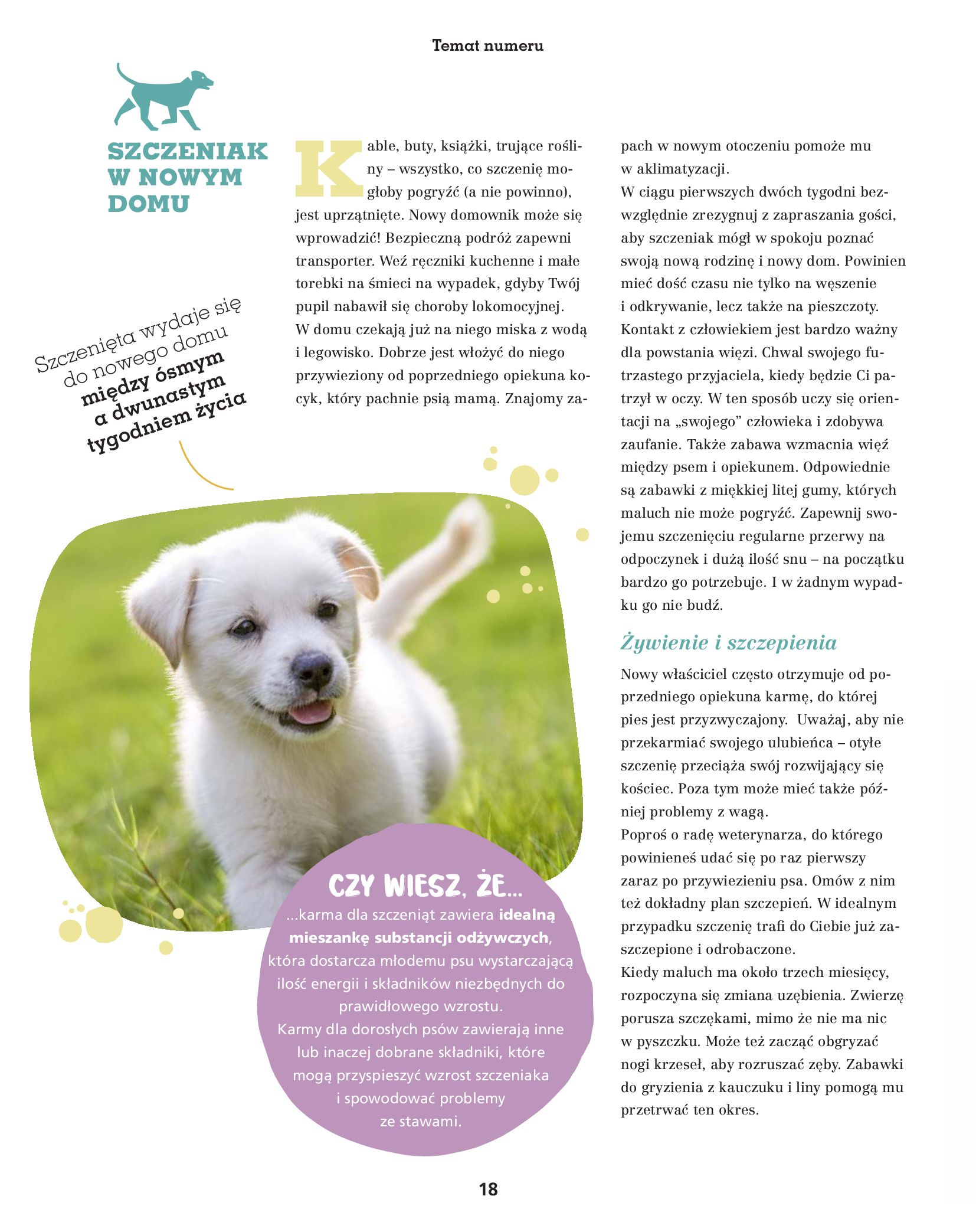 Gazetka Maxi Zoo: Gazetka Maxi Zoo - Friends 2021-05-18 page-18