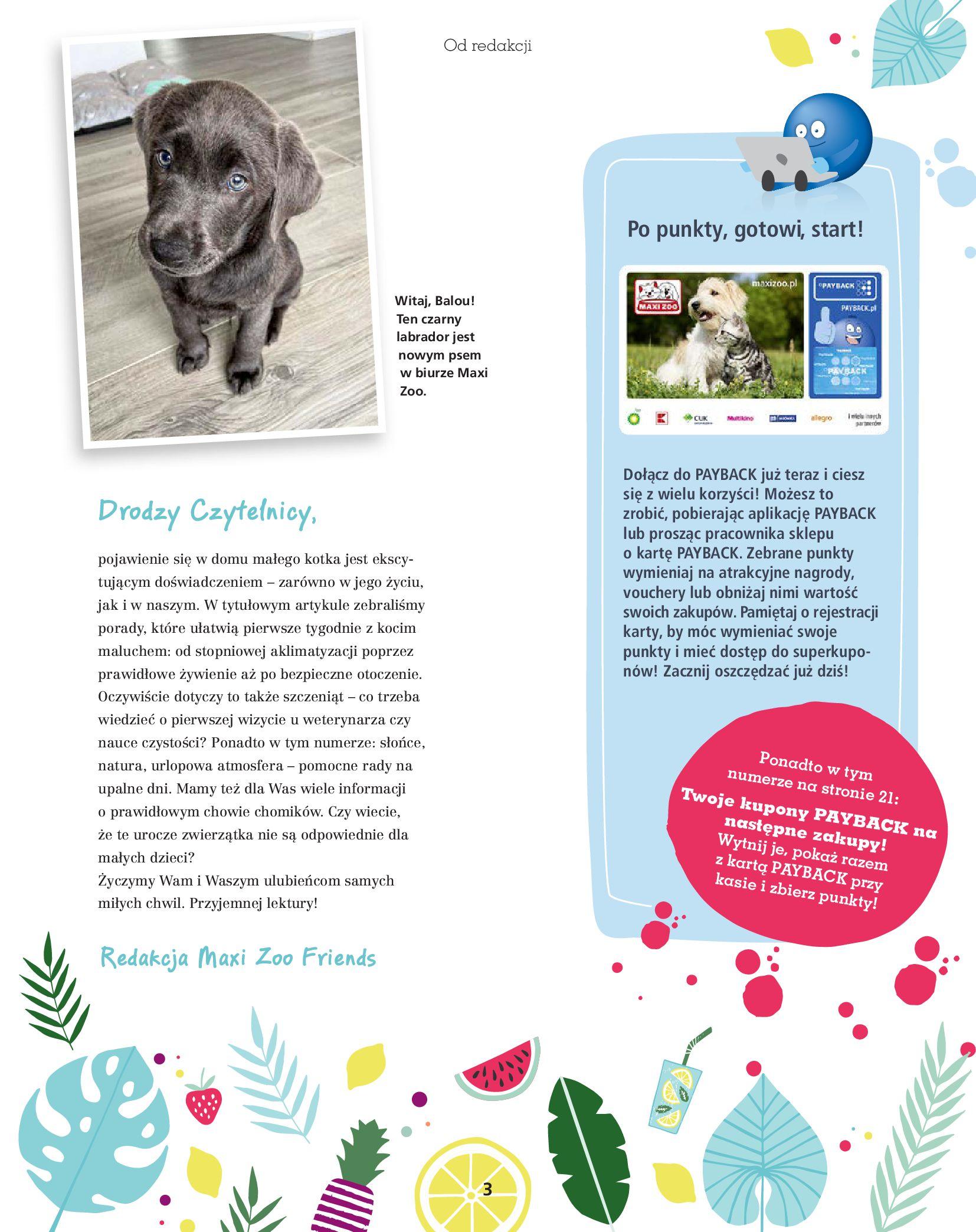 Gazetka Maxi Zoo: Gazetka Maxi Zoo - Friends 2021-05-18 page-3