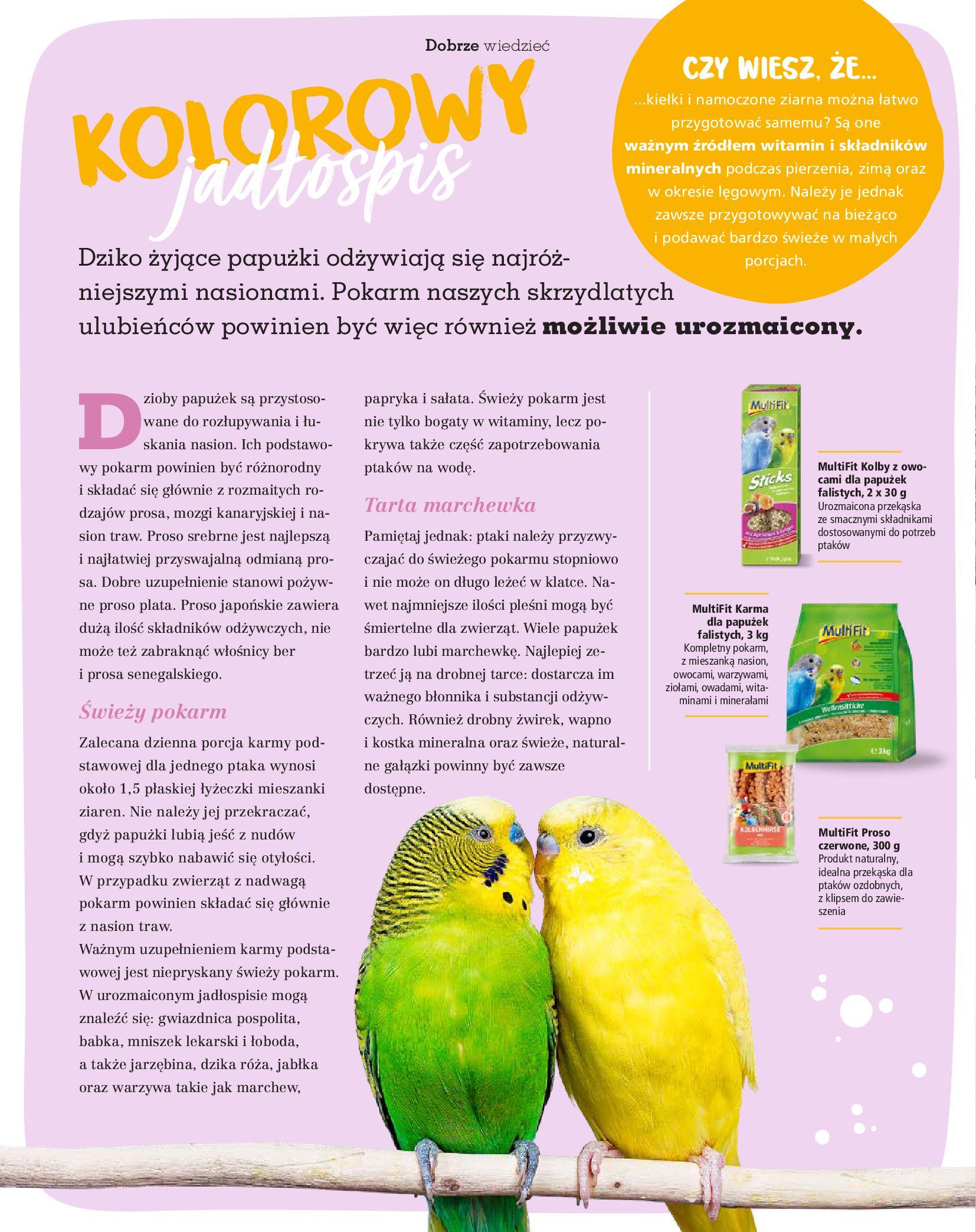 Gazetka Maxi Zoo: Gazetka Maxi Zoo - Friends 2021-05-18 page-24