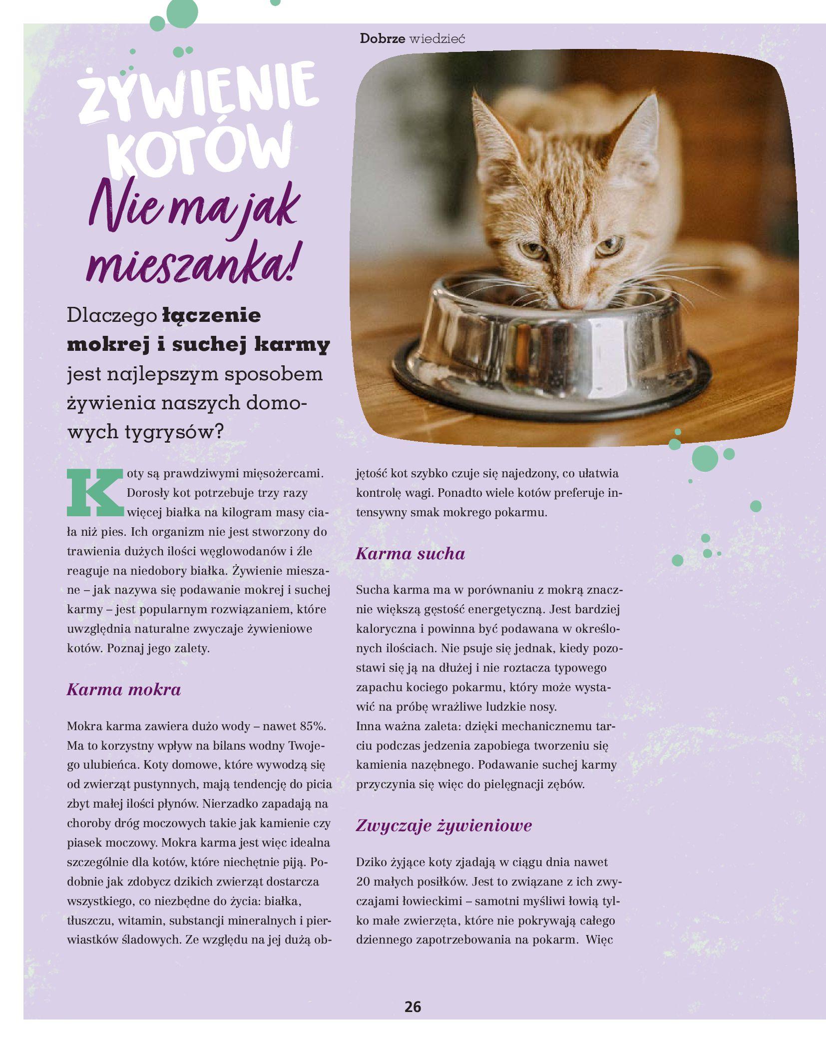 Gazetka Maxi Zoo: Gazetka Maxi Zoo - Friends 2021-05-18 page-26