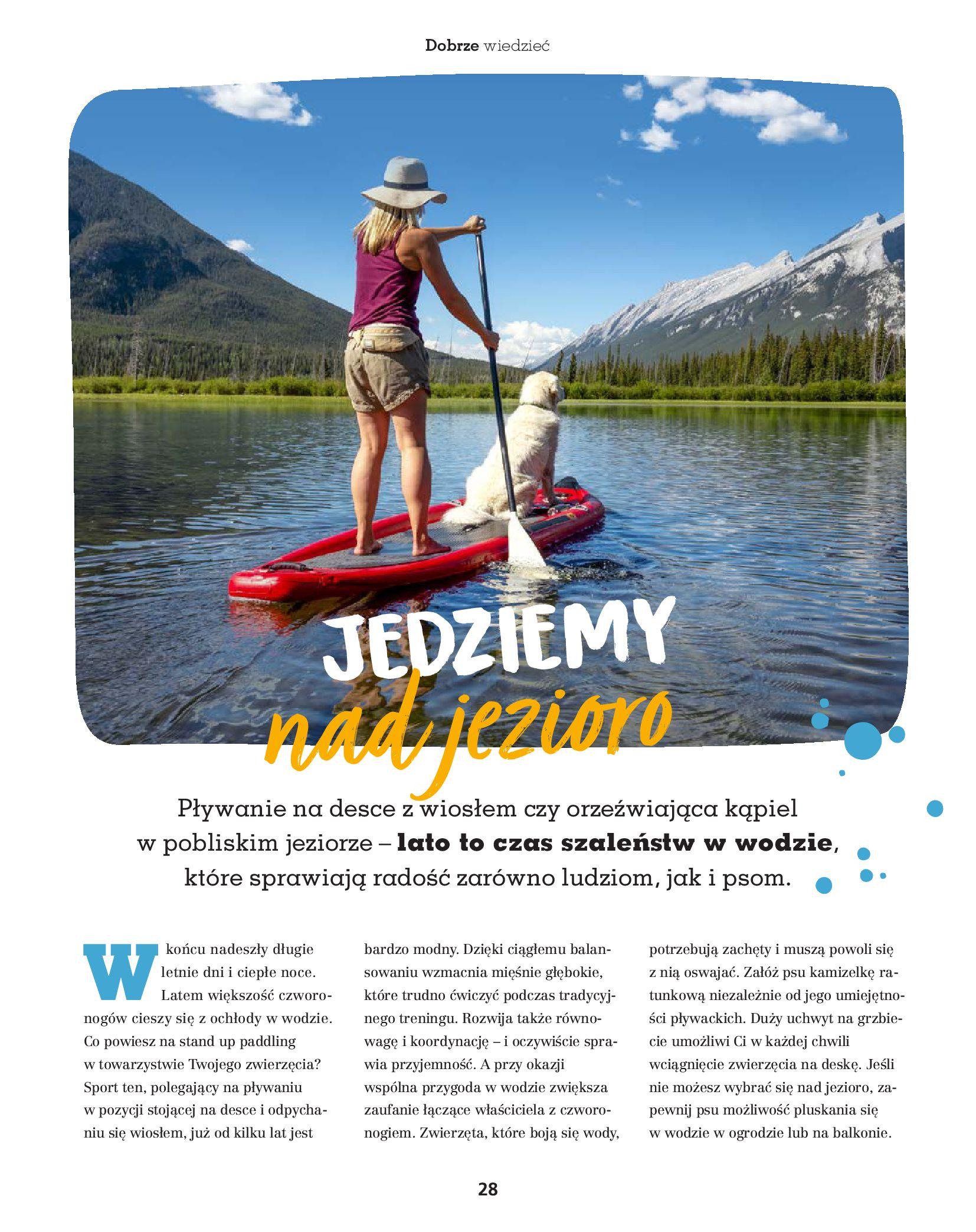 Gazetka Maxi Zoo: Gazetka Maxi Zoo - Friends 2021-05-18 page-28