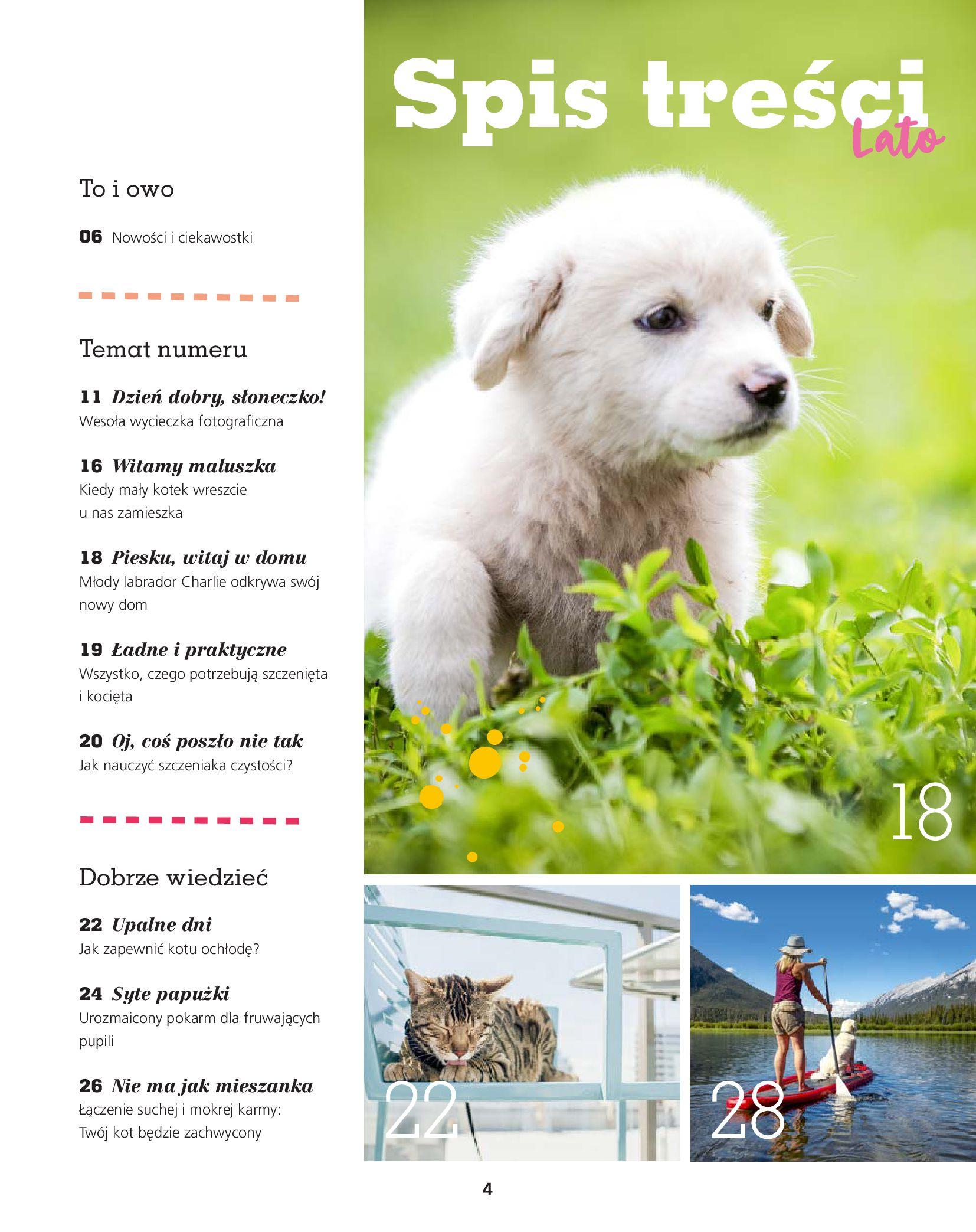 Gazetka Maxi Zoo: Gazetka Maxi Zoo - Friends 2021-05-18 page-4