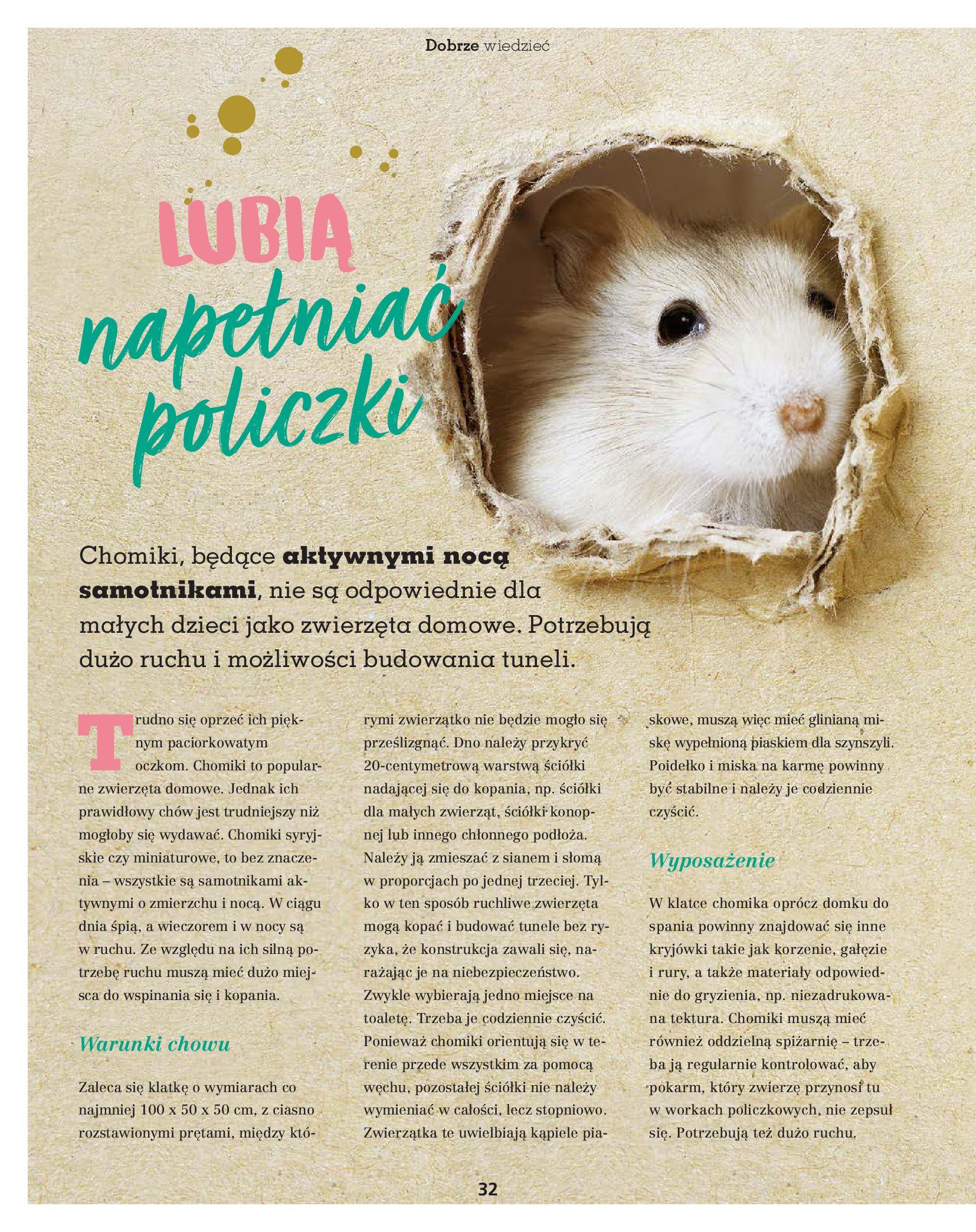 Gazetka Maxi Zoo: Gazetka Maxi Zoo - Friends 2021-05-18 page-32