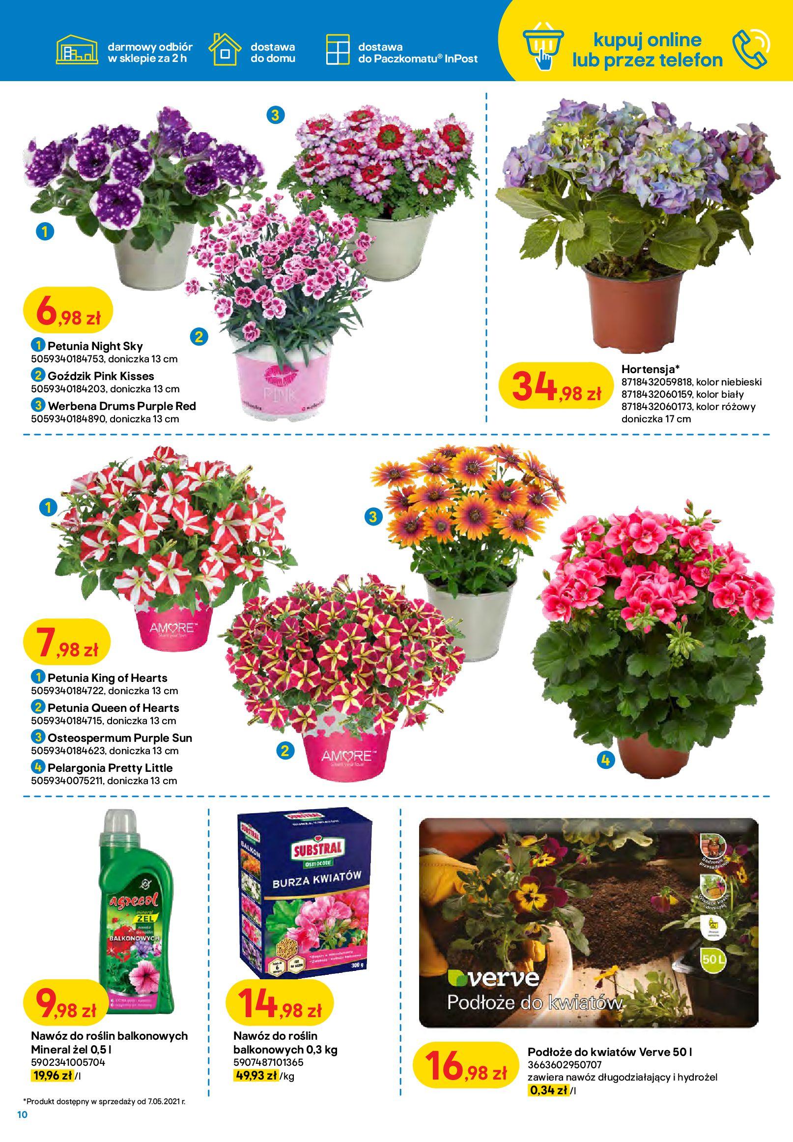 Gazetka Castorama: Ogród idealny dla Ciebie 2021-05-04 page-10