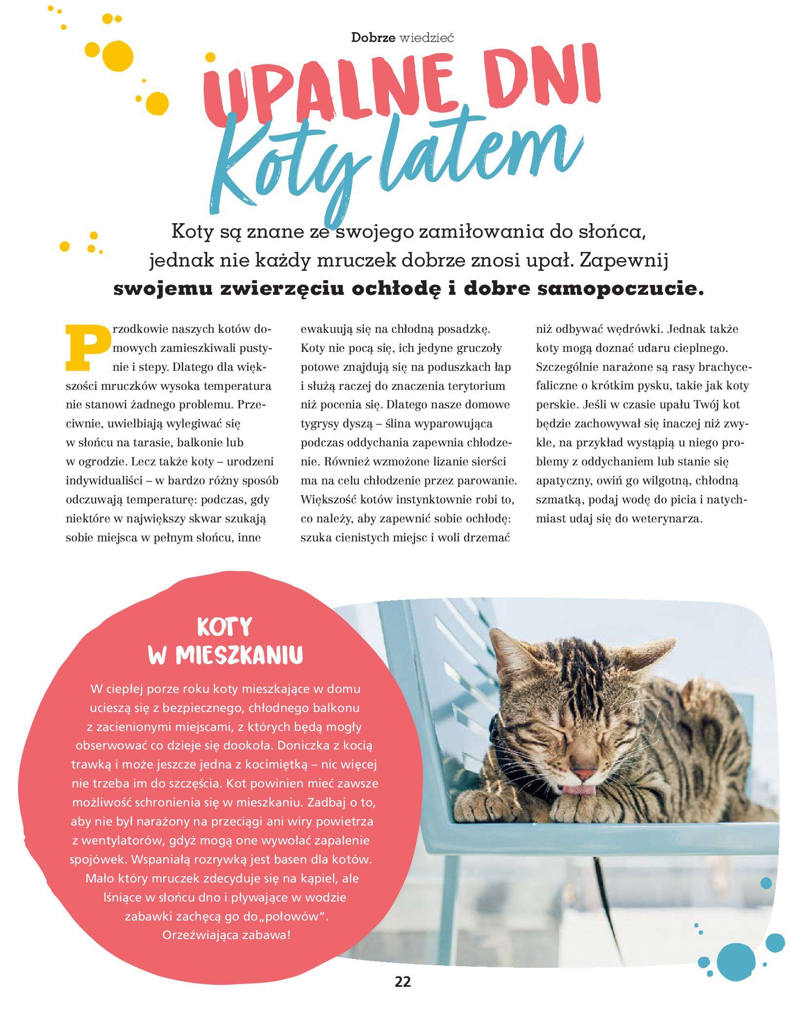 Gazetka Maxi Zoo: Gazetka Maxi Zoo 2021-08-09 page-22