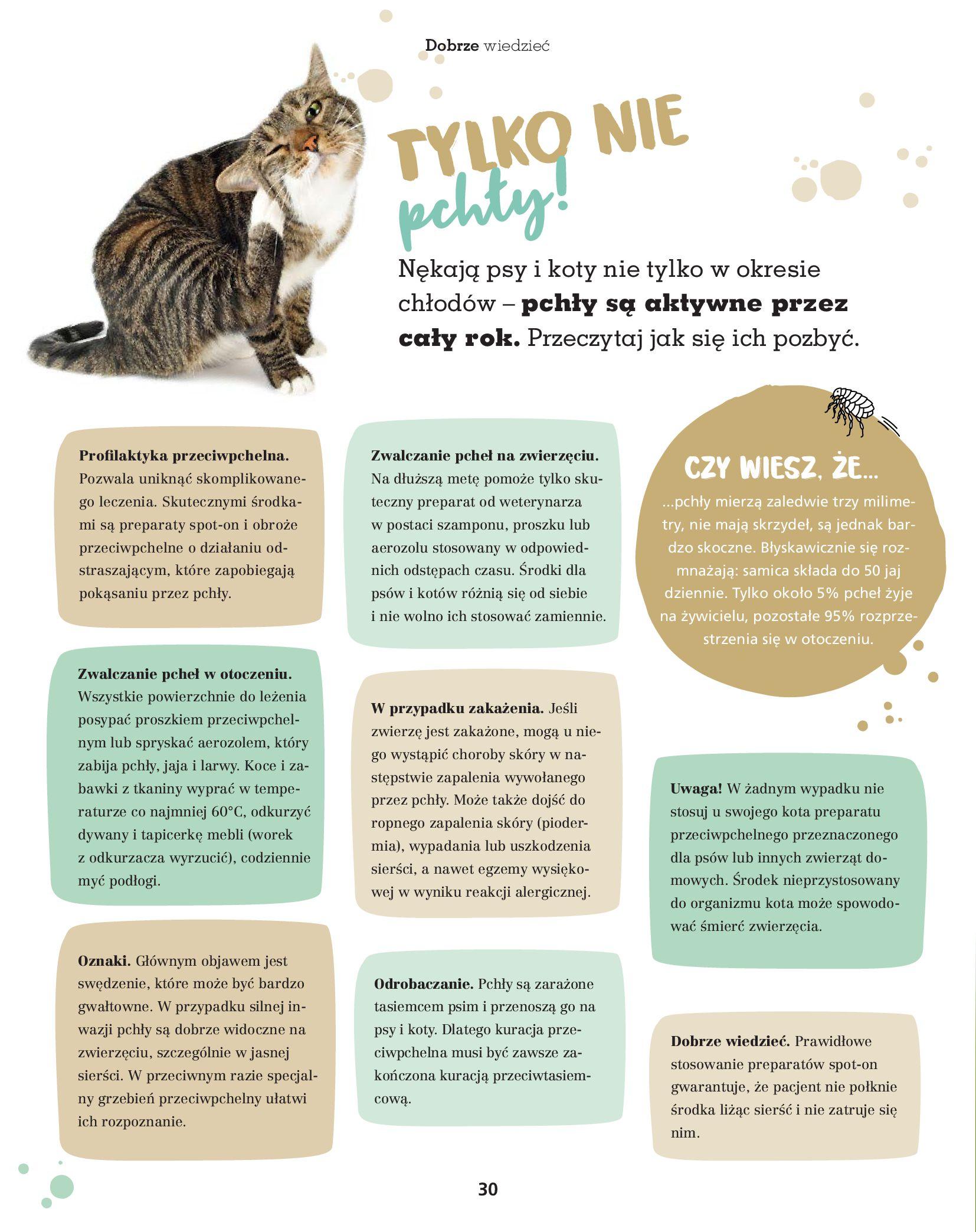 Gazetka Maxi Zoo: Gazetka Maxi Zoo 2021-08-09 page-30