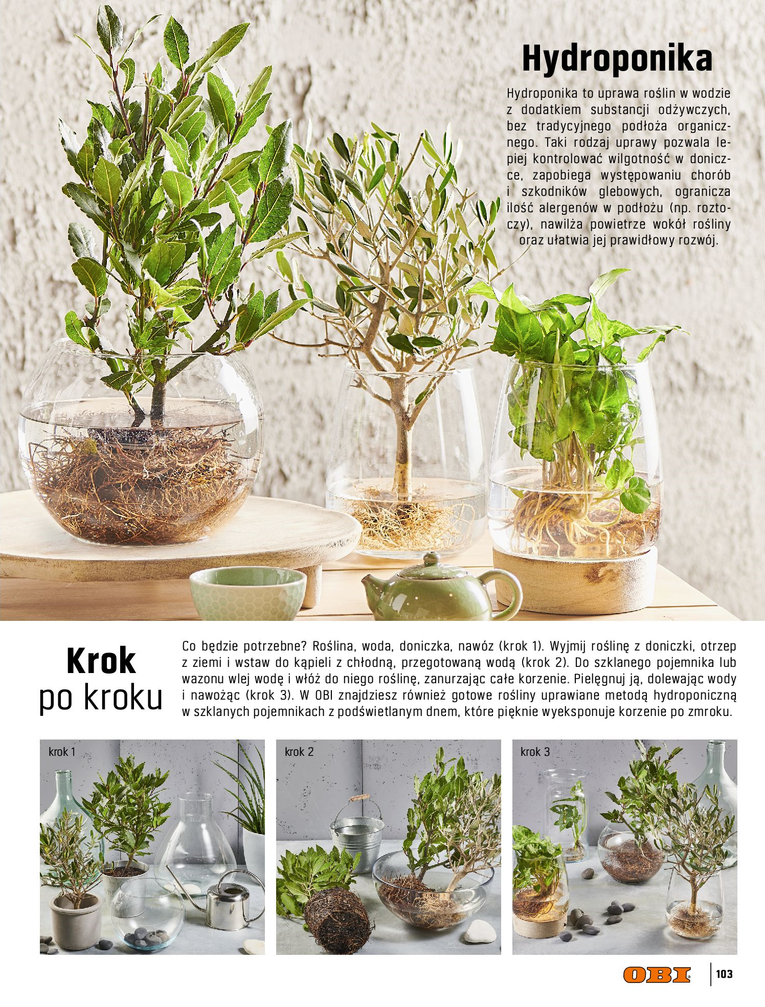 Gazetka OBI: Katalog OBI - Ogród, balkon, taras 2021-05-14 page-103