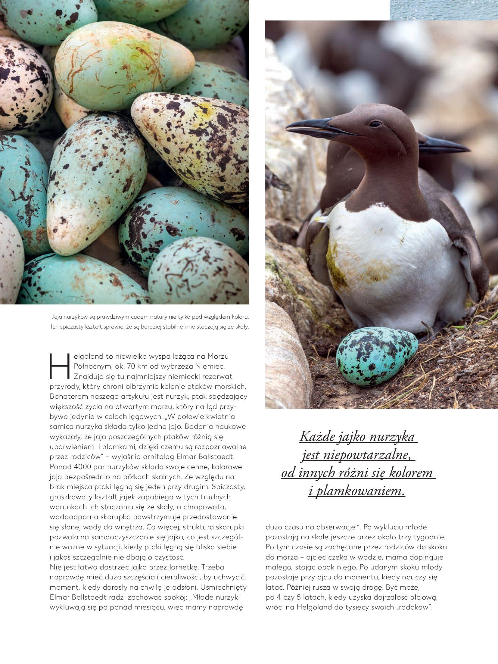 """Gazetka Kaufland: Magazyn """"Dobrze żyć dobrze"""" 2021-02-24 page-8"""