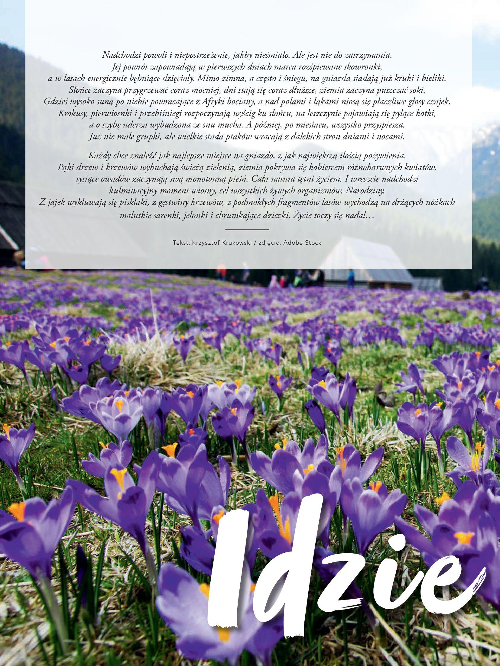 """Gazetka Kaufland: Magazyn """"Dobrze żyć dobrze"""" 2021-02-24 page-22"""