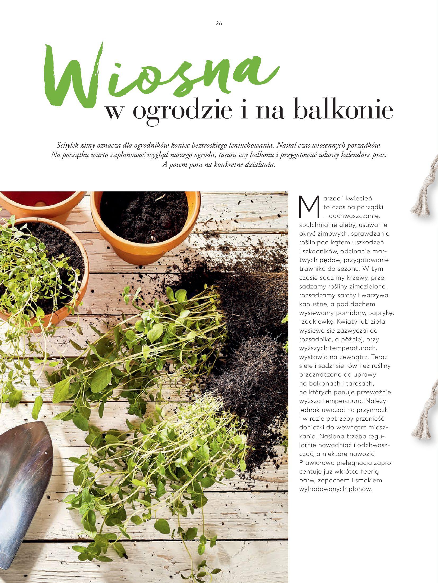 """Gazetka Kaufland: Magazyn """"Dobrze żyć dobrze"""" 2021-02-24 page-26"""