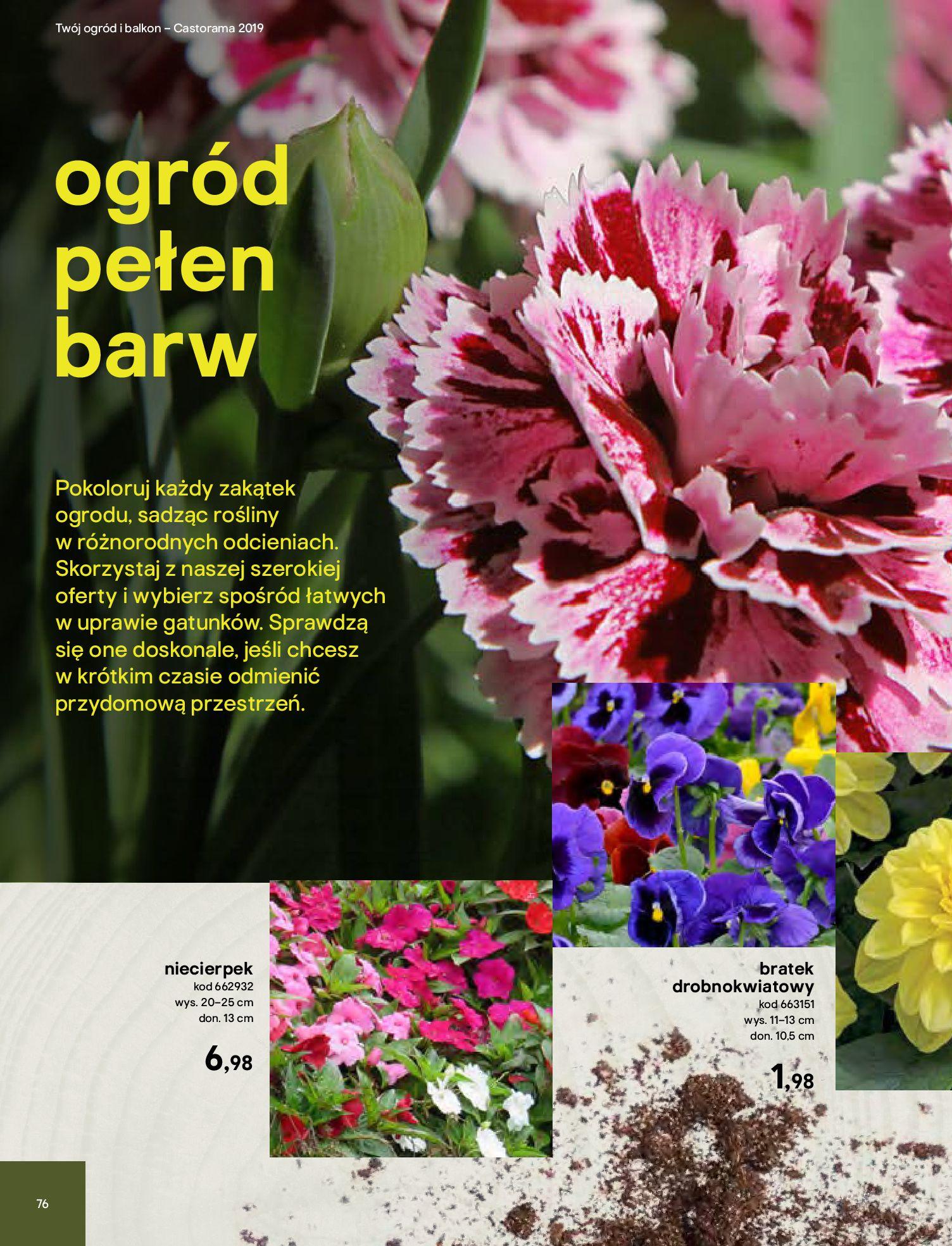 Gazetka Castorama - Katalog ogród 2019-02.04.2019-31.05.2019-page-