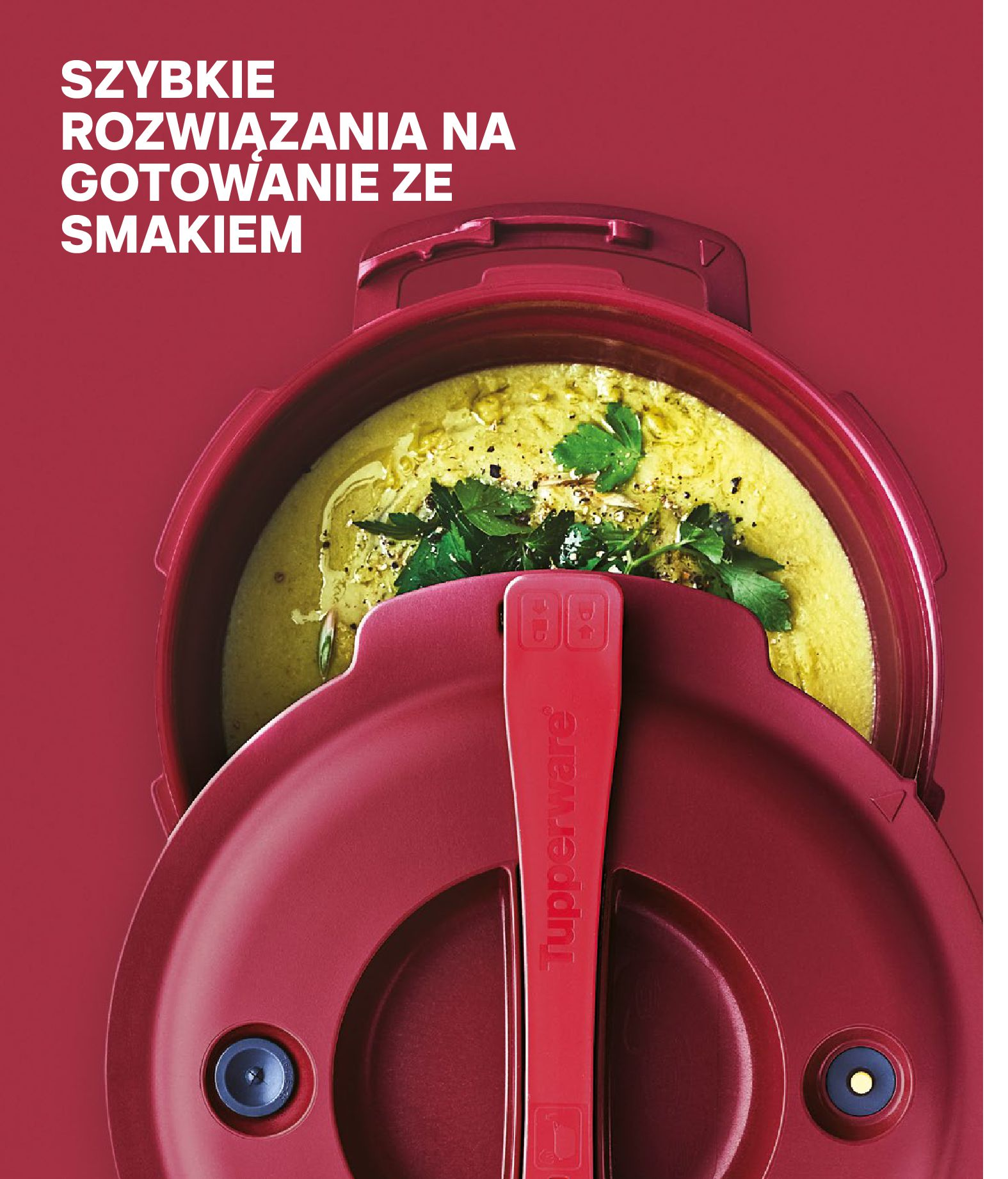 Gazetka Tupperware: Gazetka Tupperware - Katalog wiosna/ lato 2021-05-10 page-48