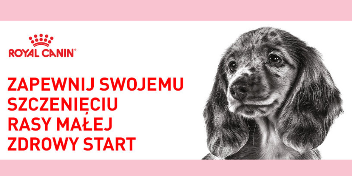 zooplus: Darmowa wyprawka Royal Canin dla Twojego szczeniaka 11.10.2021