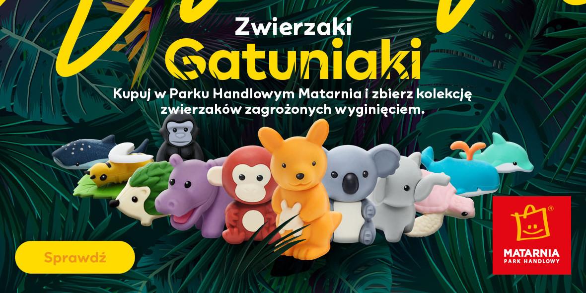 Matarnia: Gatuniaki w Matarnia Gdańsk