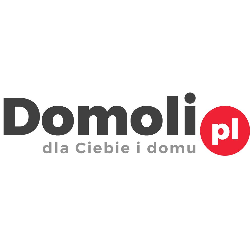 Logo Domoli