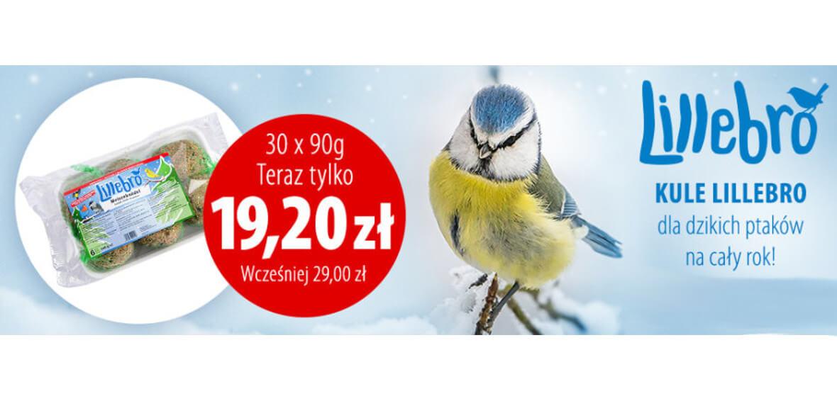 za  kule dla dzikich ptaków + gratis