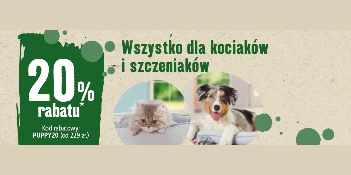 Maxi Zoo: Kod: -20% na wszystko dla kociaków i szczeniaków 01.01.0001