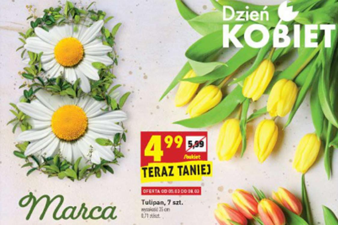 Biedronka: Od 4,99 zł Od 4,99 zł za kwiatki na Dzień Kobiet 05.03.2021