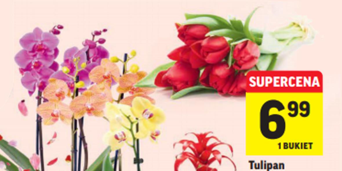 Intermarche: Od 6,99 zł za kwiatki na Dzień Kobiet 07.03.2021