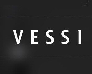 Logo Vessi