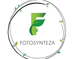 Fotosynteza