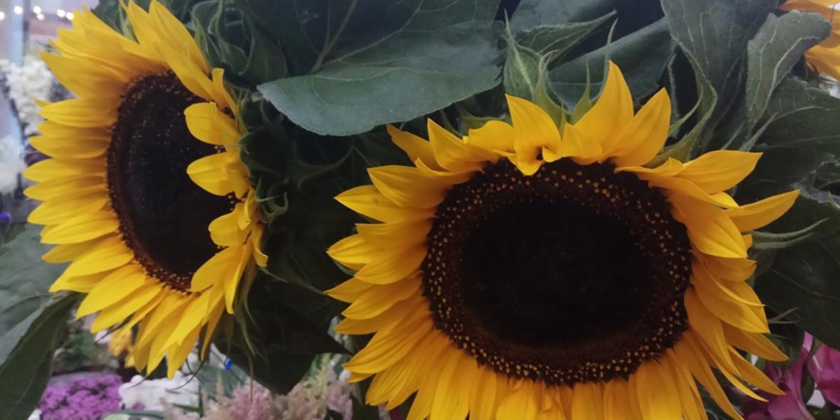 KWIACIARNIA LA FLOR : -10% w każdą środę i niedzielę na kwiaty cięte