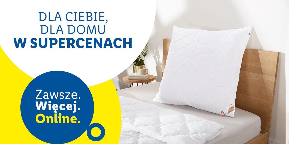 Lidl: ONLINE Nowe produkty dla Twojego domu 21.01.2021